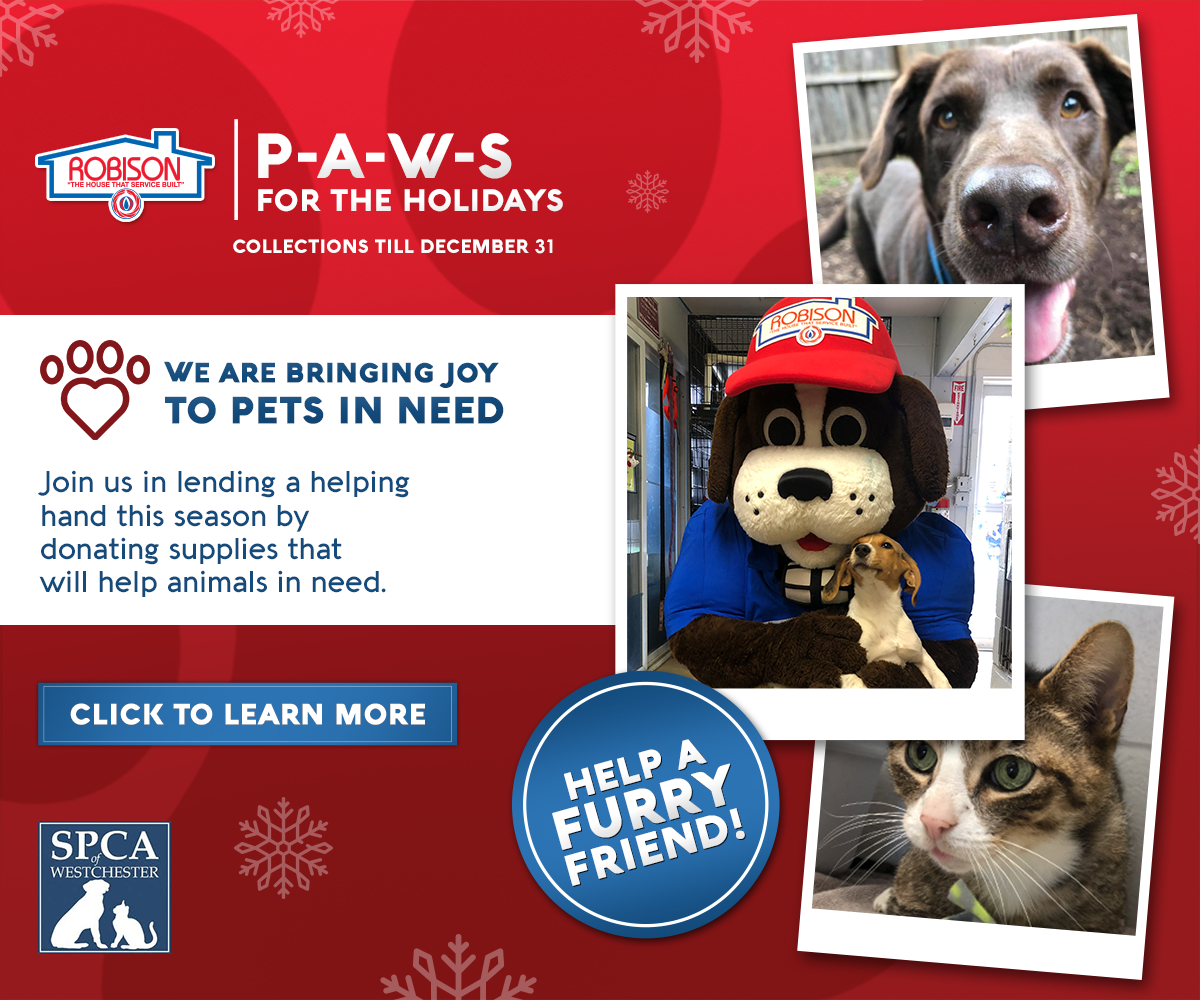 PAWS Holiday Drive 2018